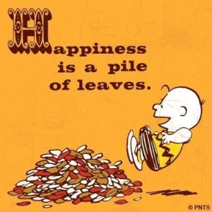 37143-Happiness-Is-A-Pile-Of-Leaves