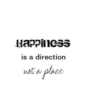 happiness_is_a_direction_tshirt-p235520426378614099a71y4_325